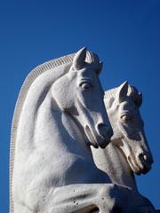 Cavalos de pedra em Belem