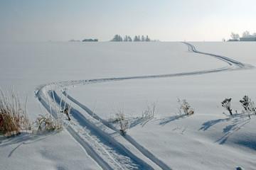 snowmobile tracks go through a winter scene