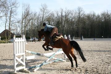 saut d'obstacles
