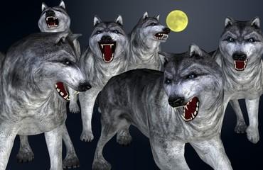 Wolfsrudel vor blauem Hintergrund