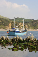 Fishing boat with rocks and seagull.