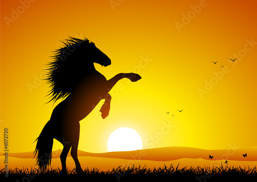 """Wild horse at sunset rearing up"" Stock image and royalty ..."