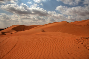 The Desert (Sultanate of Oman / Middle East)