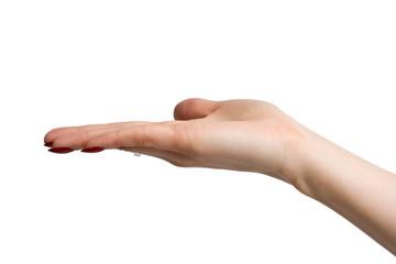 Belle main de femme