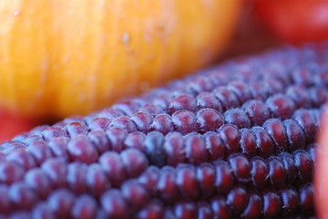autumn things composition