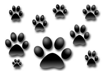 dog photo prints 3d illustration