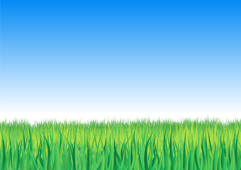 Detailed grass leaves on a gradient horizon sky