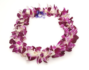 Polynesian/Hawaiian lei shot on white