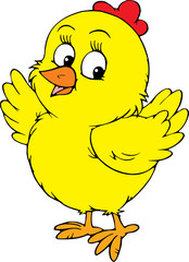 Yellow chick