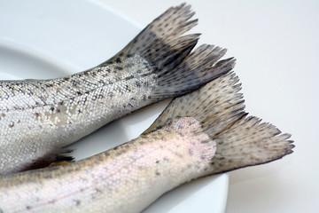 Fischschwanz