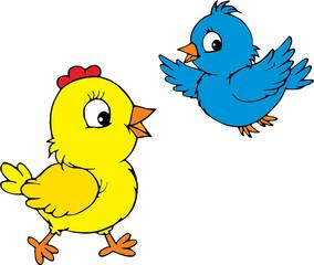 Chick and bird