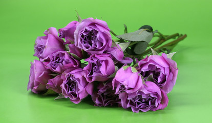 A bunch of pink roses on a green background
