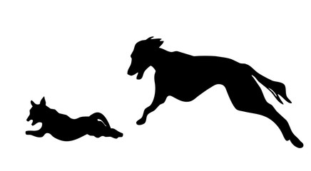 galloping dog  silhouettes with clipping path