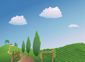 Vector illustration of a vineyard in the springtime