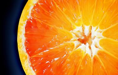 Aluminium Prints Slices of fruit Orange2