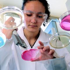 scientist - laboratory of biology