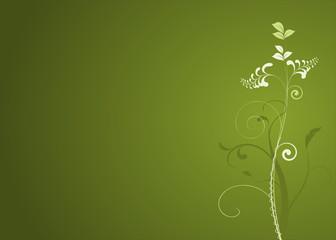 vecteur série - décorations plante en courbes vectorielles