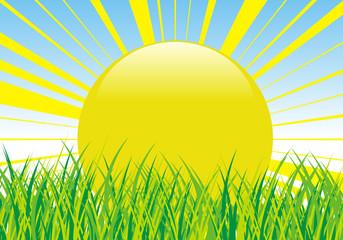 giornata di sole