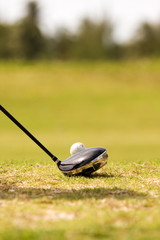 close up of driver golf club, and golf ball