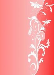 illustration floral