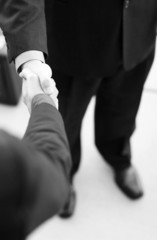 Professionals shake hands