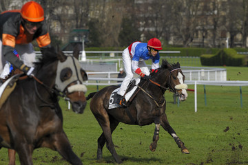 horse racing auteuil 06