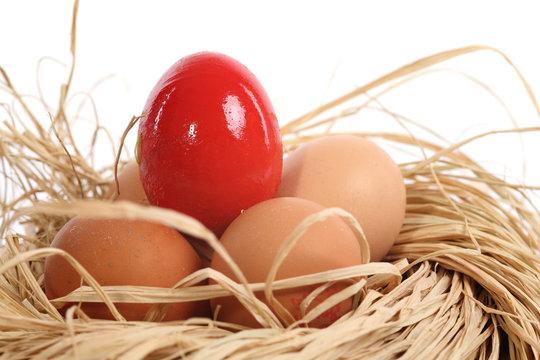 Nid et Oeufs de Pâques