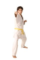 arts martiaux 32