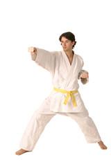 arts martiaux 33