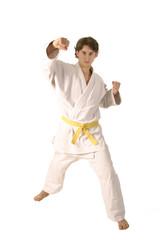arts martiaux 35
