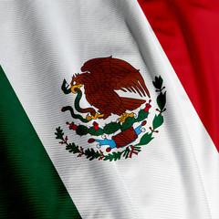 Mexican Flag Closeup