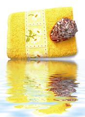 serviette et coquillage au bord de l'eau