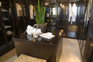 Luxury home dressing room.