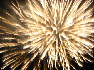 White'n gold fireworks