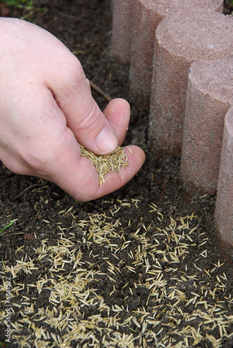 Gras Saen 04 Stock Photo And Royalty Free Images On Fotolia Com