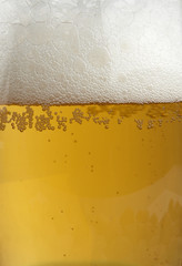 beer close-up