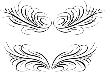 Calligraphy Baroque Curves. All Curves Separately.