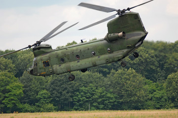 Wall Mural - CH-47 Chinook
