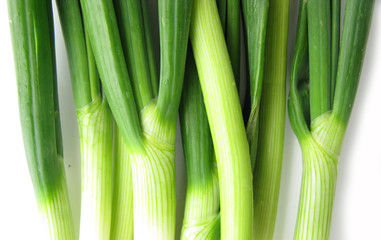 Scallion green spring onion