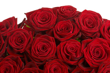 bouquet of red roses close