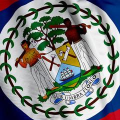 Belizean Flag Closeup