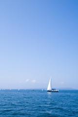 yachts. regatta