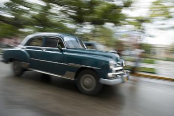 Garden Poster Cars from Cuba cuba