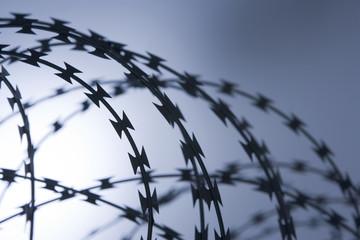 Close-Up Of Razor Wire