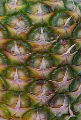 Ananas - pineapple 05