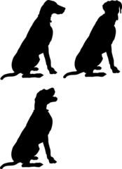 trois silhouettes de chiens