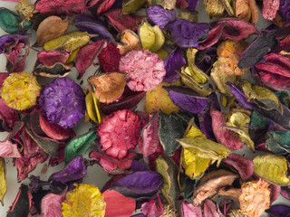 Assorted dried flower, top view