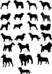 A collection of dogs. Vector. Silhouette.