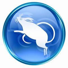 Rat Zodiac icon blue, isolated on white background.
