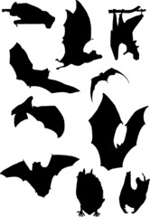 A collection of bats. Vector.
